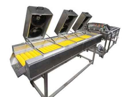 蔬菜漂洗清洗机生产供应厂家